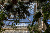 2016 3 Schonbrunn palm house 0132