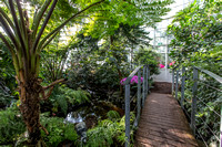 2016 3 Schonbrunn palm house 0102