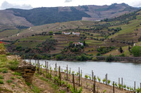 Alto Douro Wine Region